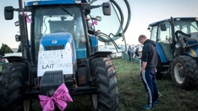 Lactalis, ce français leader mondial du lait qui rend furieux les producteurs