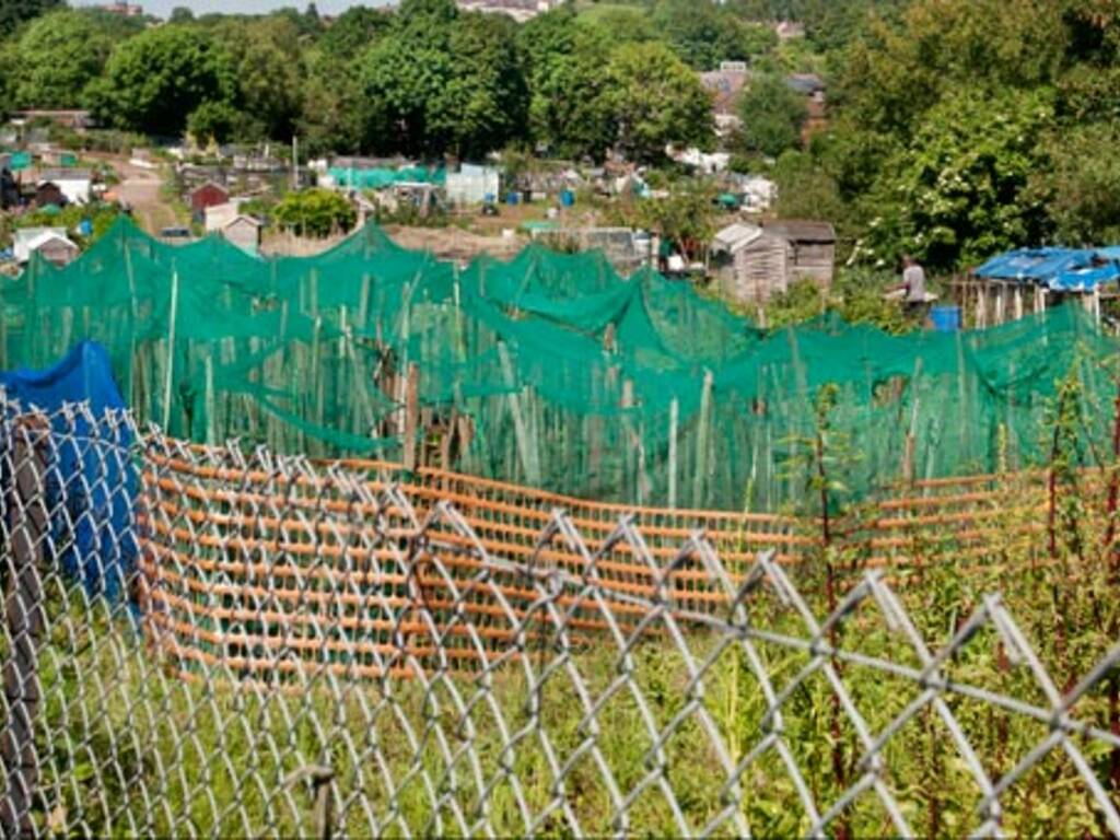 Les abris de jardin plombent aussi nos imp ts locaux - Releve cadastral propriete ...