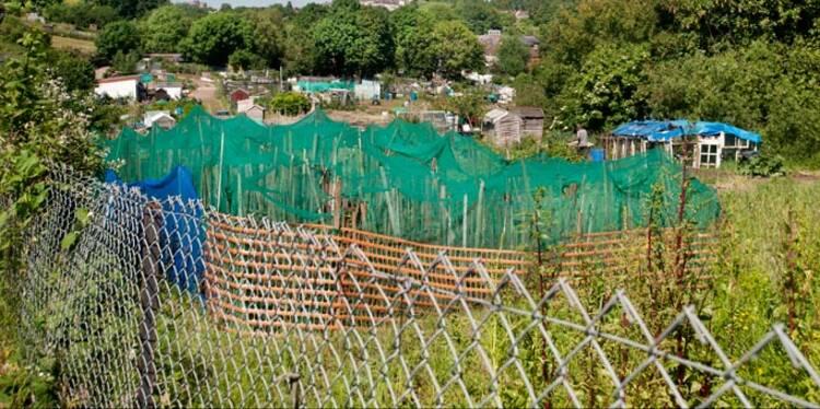 Les abris de jardin plombent aussi nos impôts locaux
