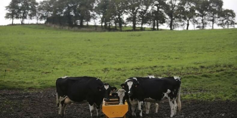 Les éleveurs engagent une épreuve de force sur les prix