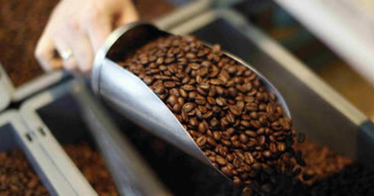 Machine A Cafe A Grain Le Bon Coin