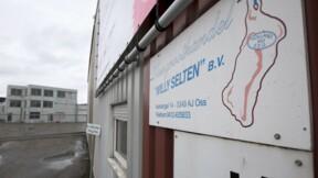 Viande de cheval: prison ferme pour un négociant néerlandais