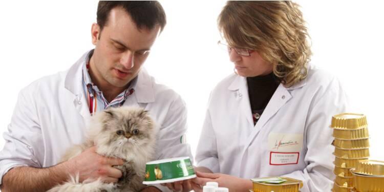 Une assurance santé animaux pour le printemps