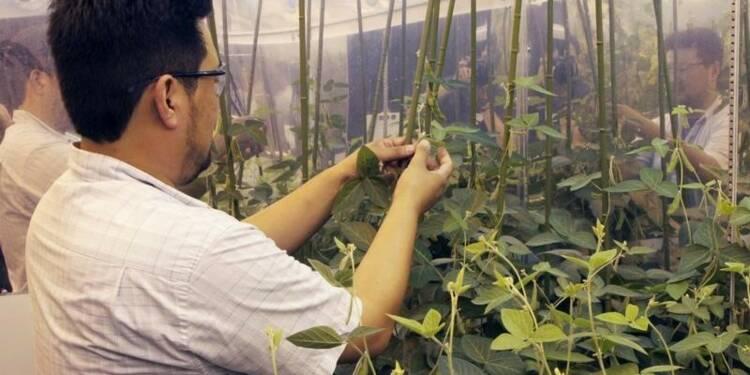 Monsanto veut rassurer Syngenta sur la faisabilité d'une fusion