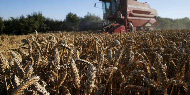 Le Foll confirme envisager une augmentation des aides agricoles
