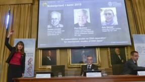 Le Nobel de chimie 2015 à des spécialistes de l'ADN