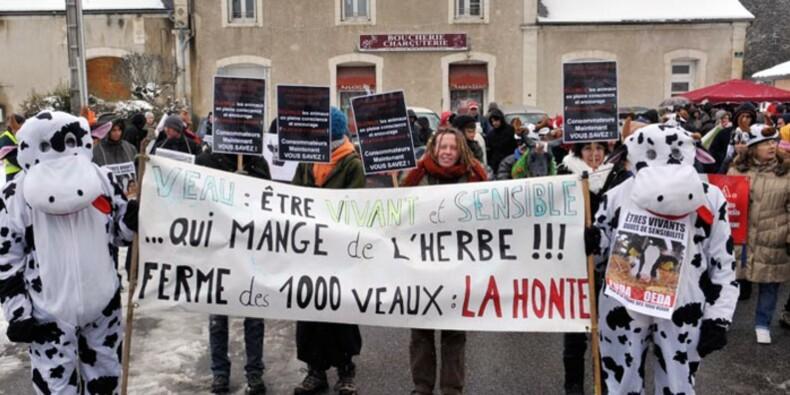 Lobbys et élus s'opposent au changement dans les régions Aquitaine, Limousin, Centre et Poitou-Charentes