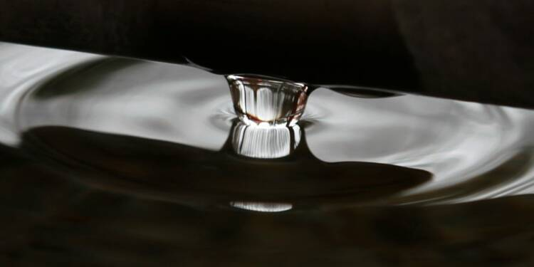 L'eau du Bourget sous haute surveillance pour la COP21