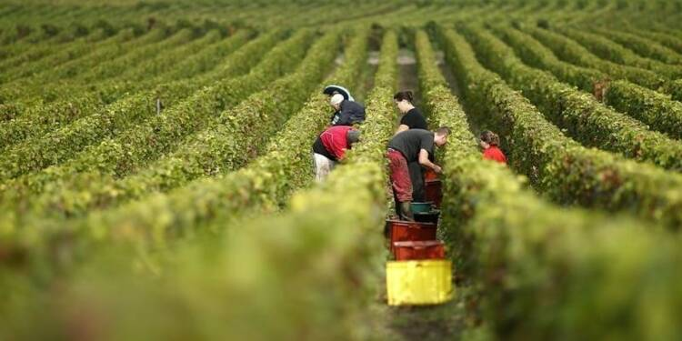 Climats de Bourgogne et coteaux de Champagne au patrimoine mondial