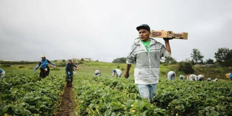 Grâce aux immigrés, nos entreprises sont plus compétitives