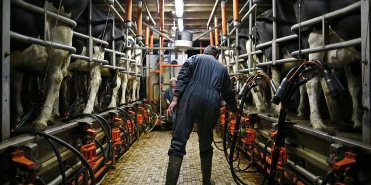 Manifestations d'agriculteurs porcins et laitiers en Bretagne