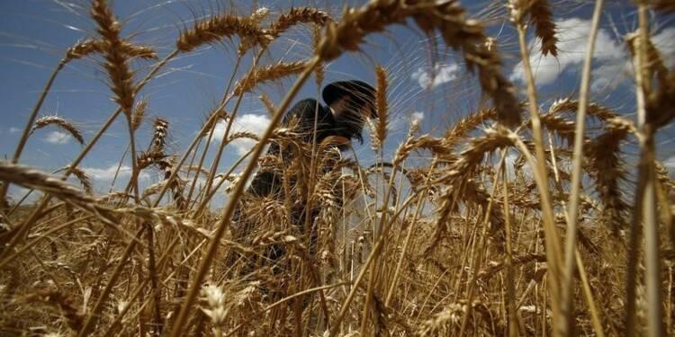 L'UE impose une mention sur les produits des colonies juives