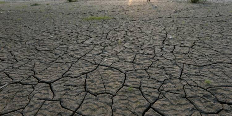 """Le changement climatique, une """"urgence médicale"""", dit un rapport"""