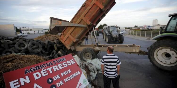 Les éleveurs ne désarment pas et préparent une action en Mayenne