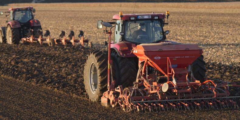 Pas de quartier entre les cracks de l'agriculture
