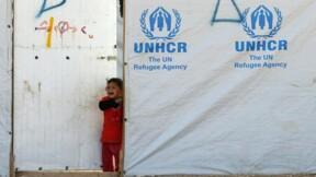 L'année 2014 a été dévastatrice pour les enfants, selon l'Unicef