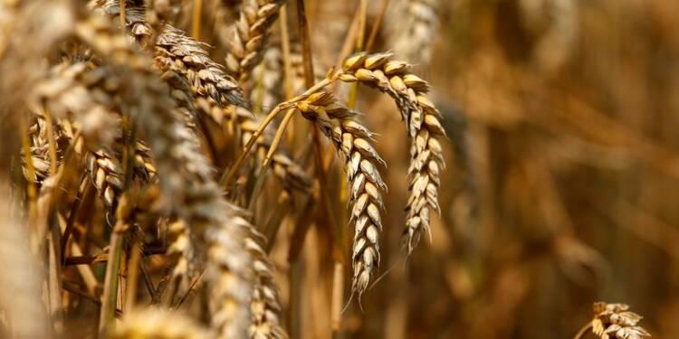 Les mauvaises nouvelles s'accumulent pour les agriculteurs