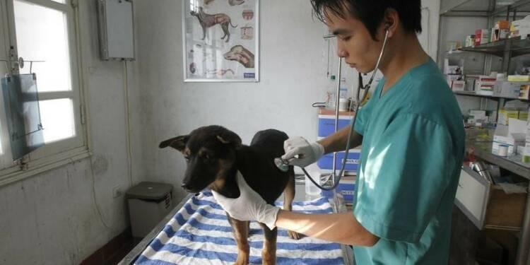 Virbac boucle l'acquisition des actifs vétérinaires d'Eli Lilly
