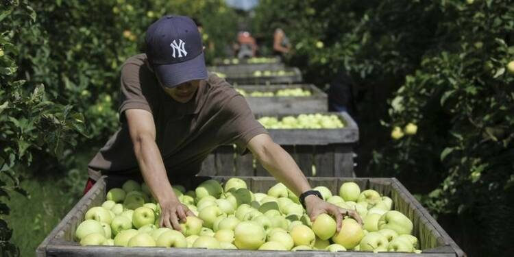L'embargo de Moscou inquiète les agriculteurs français