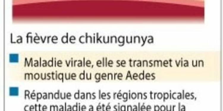 Campagne de prévention aux Antilles contre le chikungunya