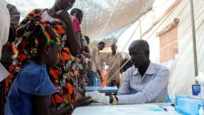 Forte baisse de la mortalité due au paludisme