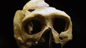 L'homme de Kostenki précise le métissage Sapiens-Néandertal