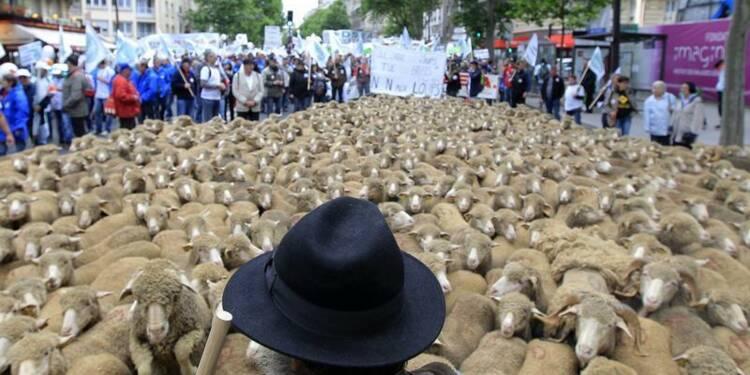 Des milliers d'éleveurs manifestent à Paris