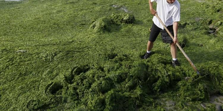On peut régler le problème des algues vertes en dix ans, dit Foll
