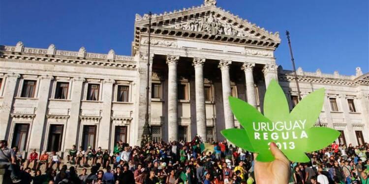 La loi sur la légalisation du cannabis adoptée en Uruguay
