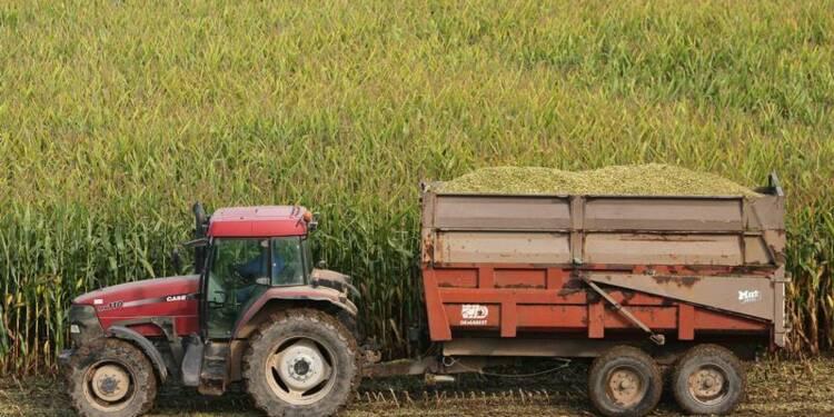 Pas de majorité pour bloquer un nouveau maïs OGM dans l'UE