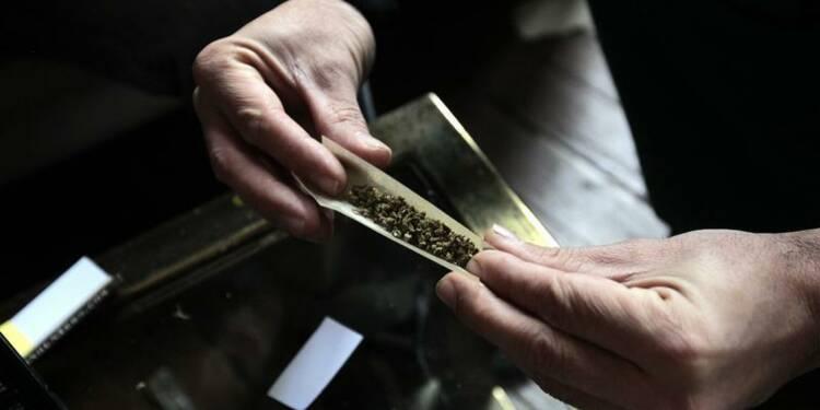 Les Verts veulent débattre de la légalisation du cannabis