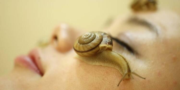 La bave d'escargots, élixir de beauté