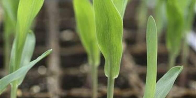Le 1er trimestre de Monsanto meilleur que prévu