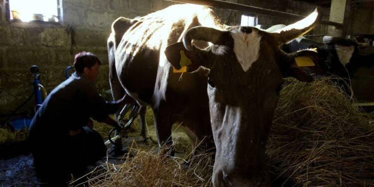 L'Assemblée sonne l'alarme pour l'élevage laitier