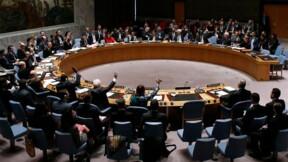 Résolution humanitaire du Conseil de sécurité sur la Syrie votée