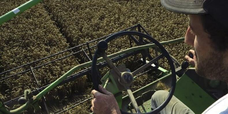 François Hollande s'engage à revaloriser les retraites agricoles