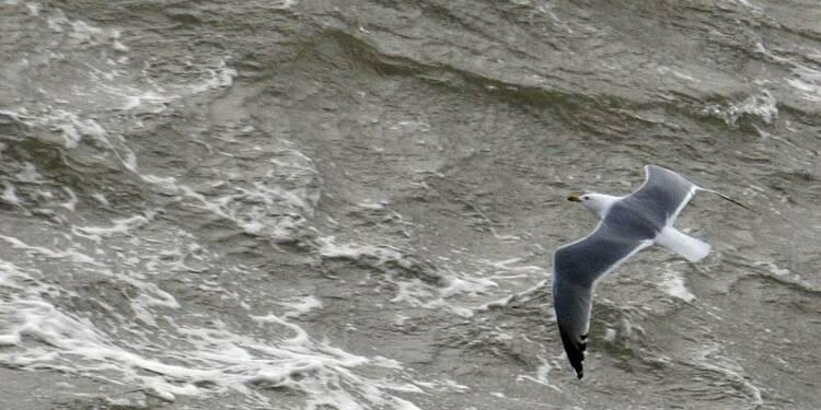 La mer pourrait produire de l'électricité en France dès 2016