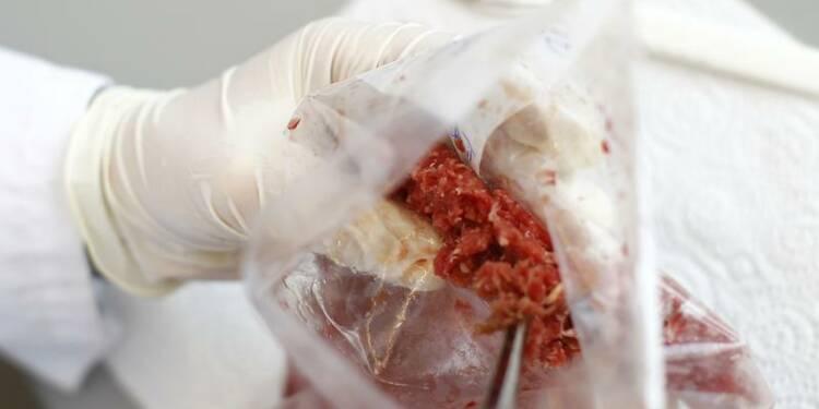 Quatre suspects déférés dans la fraude de viande de cheval
