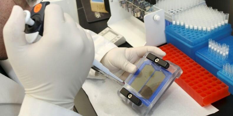 Le mythe du yéti à l'épreuve de l'ADN