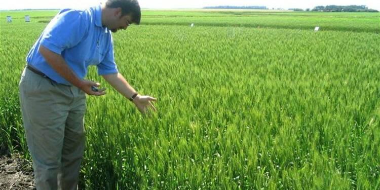 Monsanto relève ses prévisions annuelles