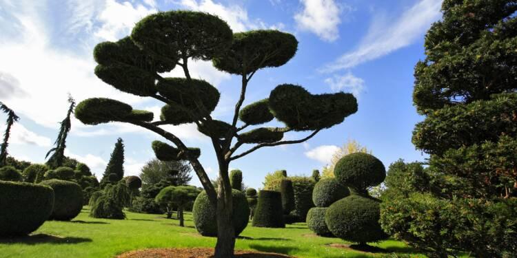 L'art du jardin cousu main