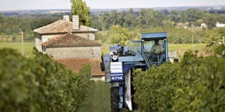 Les prix des propriétés viticoles et agricoles pourraient chuter de 35%
