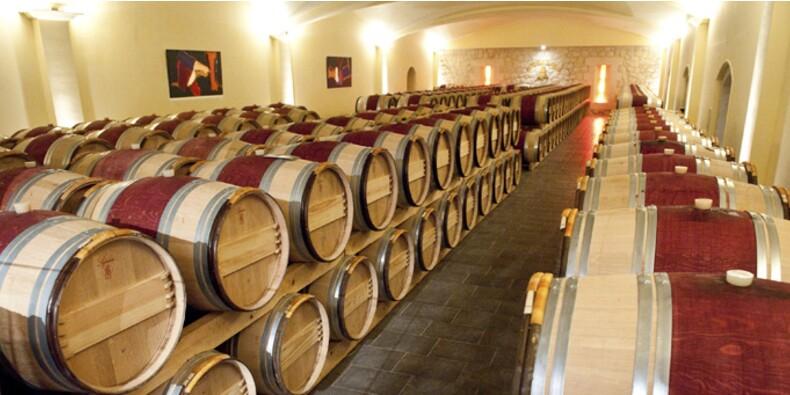 Le vignoble français attise les convoitises des Chinois
