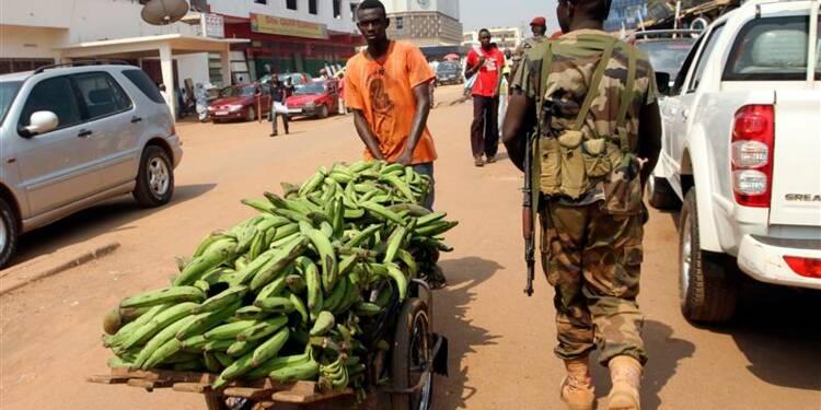 Les rebelles du Séléka divisés sur la stratégie en Centrafrique