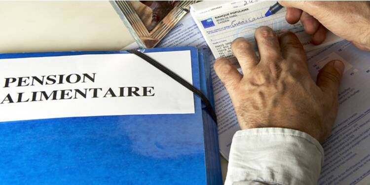 Pensions Alimentaires Comment Recuperer Son Du Capital Fr