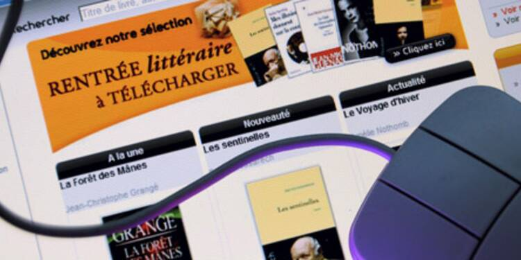 Le piratage de livres se développe sur internet