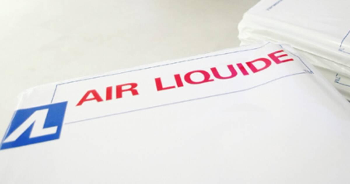 air liquide affiche sa confiance pour 2010. Black Bedroom Furniture Sets. Home Design Ideas
