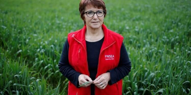 La FNSEA alerte Philippe sur le coût du travail