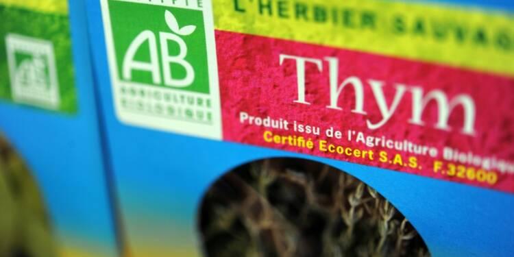 Herbes aromatiques en grandes surfaces: prix dignes du caviar