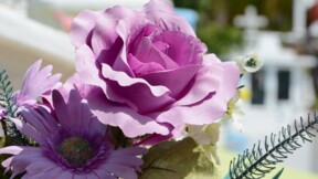 10 sites web pour des obsèques plus simples et moins chères